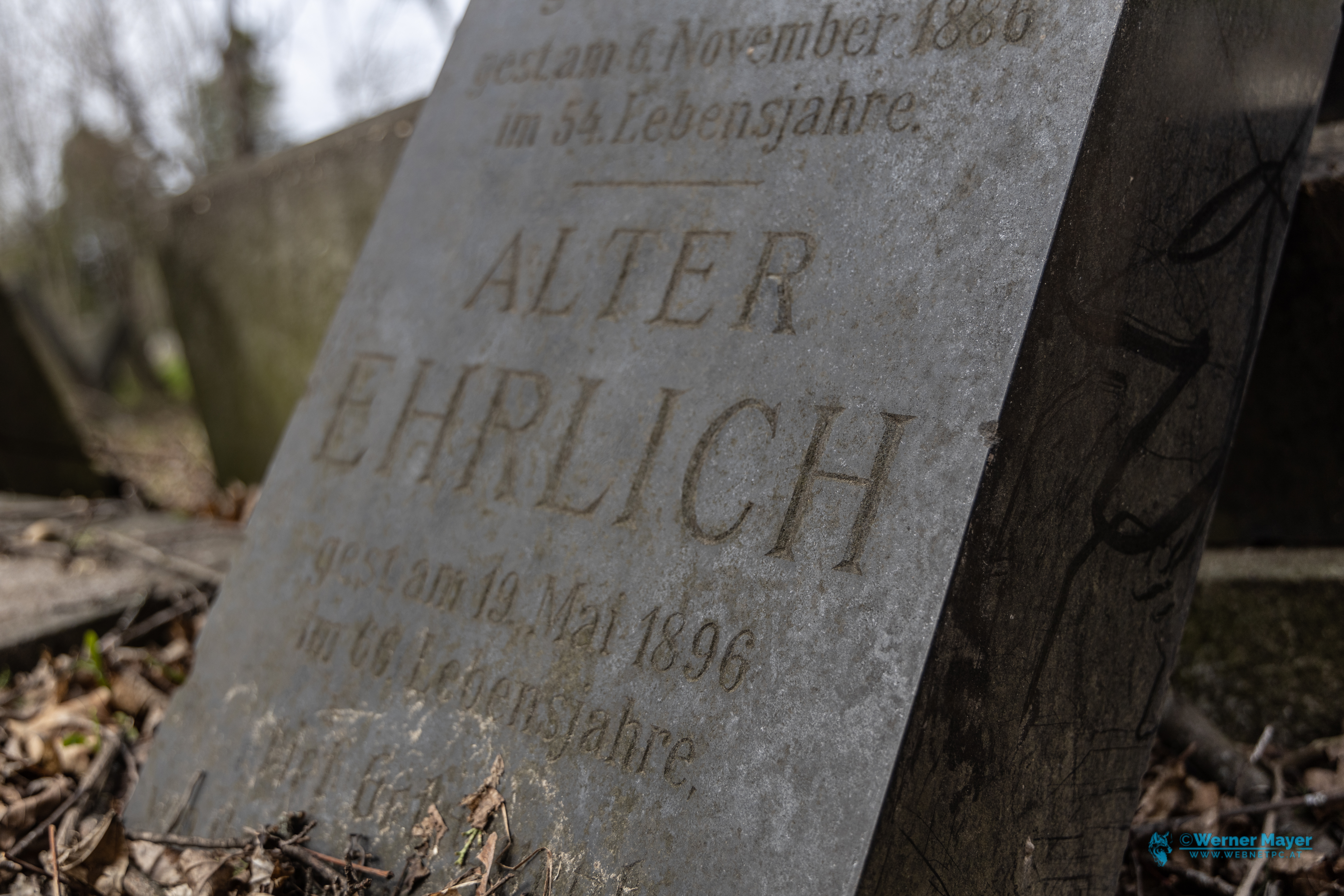 You are currently viewing Alter jüdischer Friedhof